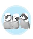 雪被り子ペンギン